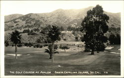 Golf Course at Avalon