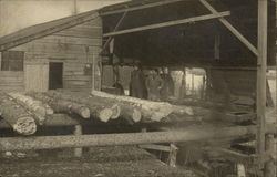 Logs at a Lumber Mill with Workers