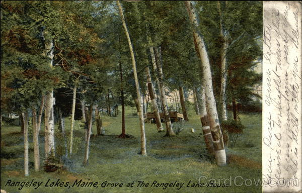 Grove at The Rangely Rangeley Lakes Maine