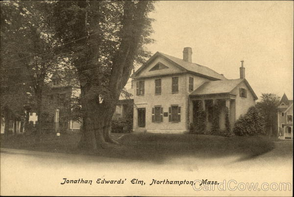 Jonathan Edwards' Elm Northampton Massachusetts