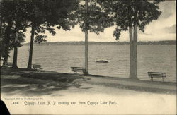Looking East from Cayuga Lake Park