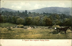 A Typical New England Haying Scene
