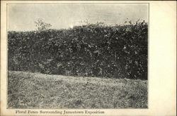 Floral Fence Surrounding Jamestown Exposition