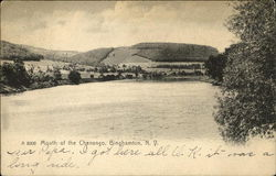 Mouth of the Chenango