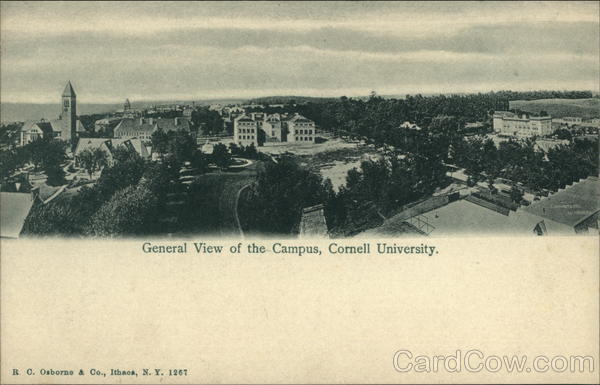 General View of the Campus, Cornell University Ithaca New York