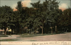 Scenic View of the Park Postcard