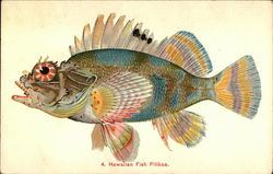 Hawaiian Fish, Pilikoa