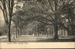 Campus View Postcard