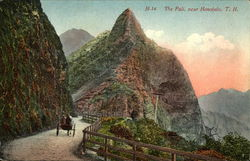 The Pali