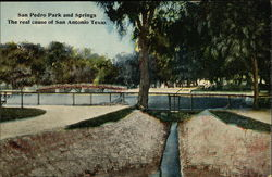 San Pedro Park and Springs