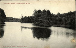 Brook's Pond