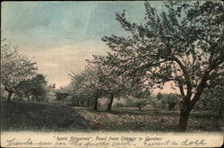 """Apple Blossoms"", Road from Orange to Gardner"