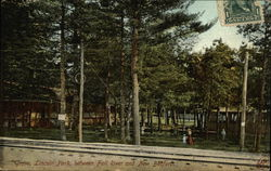 Grove, Lincoln Park, between Fall River and New Bedford
