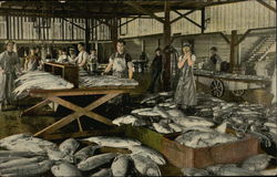 Group of Men Working at a Fish Processing Facility