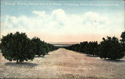 Orange Groves, Edison Land & Water Company, Kern County