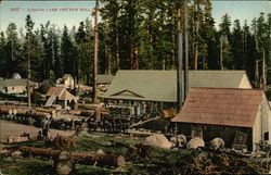 Lumber Camp and Saw Mill