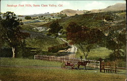 Saratoga Foot Hills, Santa Clara Valley