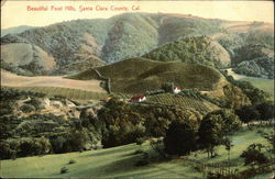 Beautiful Foot Hills, Santa Clara County