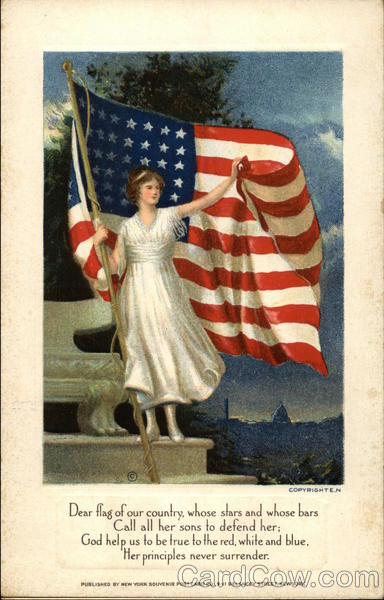 Woman Holding the USA Flag E. N. Patriotic