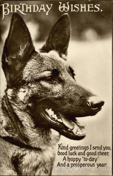 Birthday Wishes - With Black & White Photograph of German Shepard