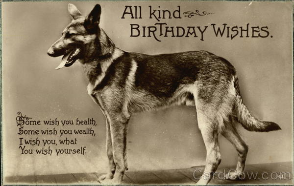 All Kind Birthday Wishes Dogs Postcard