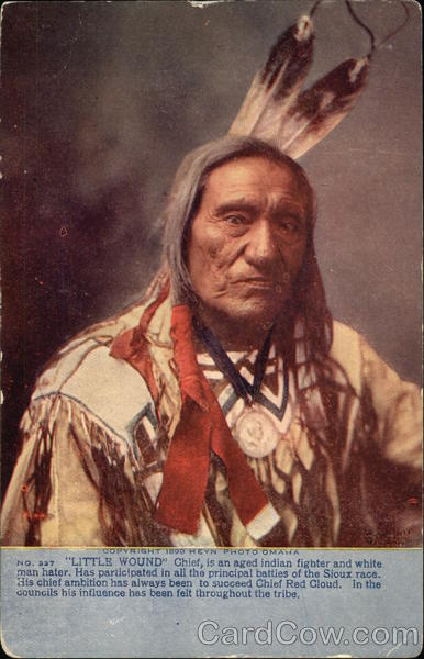 Sioux Chief Little Wound Native Americana