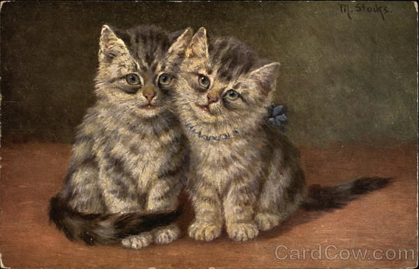 Two Gray Striped Kittens with Blue Bow Cats