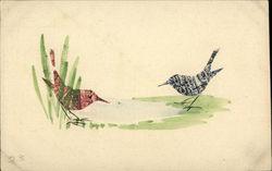 Bird Stamp Montage