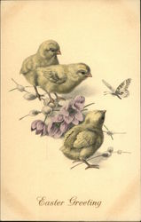 Easter Greeting with Three Chicks, Flowers and Butterfly
