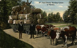 Good Roads. Hauling Cotton To Market