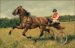 Harness Racing with a Horse, Cart, and Jockey