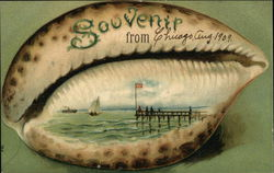 Shell Souvenir From Chicago, August 1909