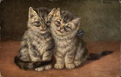 Two Gray Striped Kittens with Blue Bow