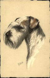head of a terrier