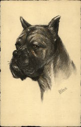 A Dog Portrait Facing Left