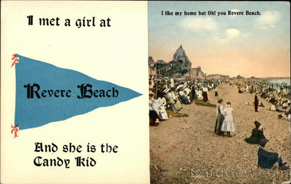 View of Beach Revere Beach Massachusetts Banners & Pennants