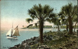 Indian River - Mouth Elbow Creek Postcard