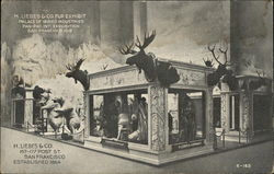 H. Liebes & Co. Fur Exhibit, Palace of Varied Industries