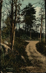 Lovers Lane, Hopedale Park Postcard