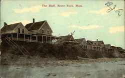 The Bluff, Homes
