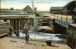 The Herring Weir