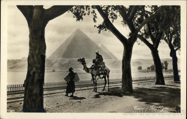 Man on Camel woth Pyramids in Background Cairo Egypt