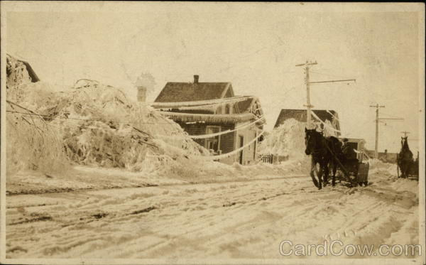 Ice and Snow Storm, Downed Trees - Horse & Carriage Whitney Pier Canada