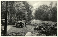 The Grove, Frank Newhall Look Park