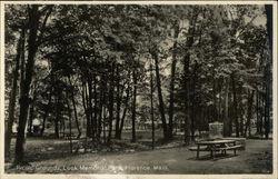 Picnic Grounds, Look Memorial Park