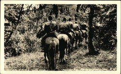 Group of Men Riding Horses in Alaska at McKinley Recreational Camp