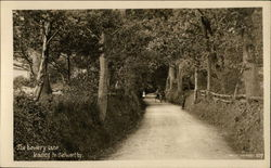 The Bowery Lane Leading to Selworthy