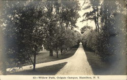 Willow Path, Colgate Campus