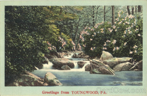 Greetings From Youngwood Pennsylvania