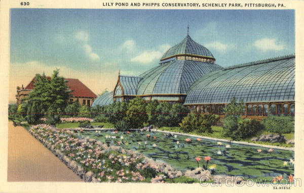 Lily Pond And Phipps Conservatory, Schenley Park Pittsburgh Pennsylvania